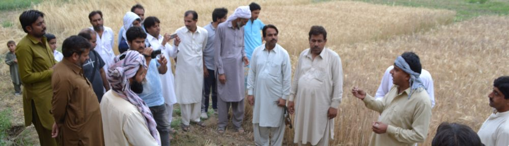 Pakistan Kissan Mazdoor Tehreek